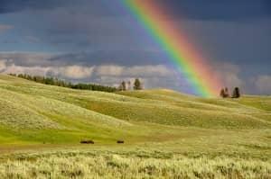 The Rainbow Run @ Cutteslowe Park, Oxford   England   United Kingdom