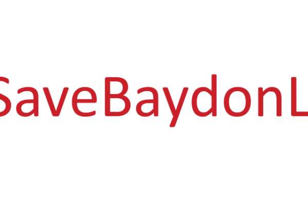Save the Baydon Lion – June Update