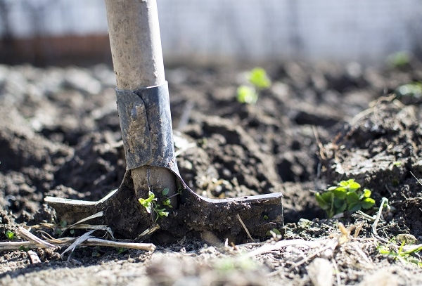Eight Bells for Mental Health needs your old gardening tools